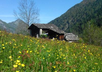 Ecreux village